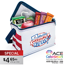 CL174<Br><br>PROMO AMERICANA 6-PACK COOLER